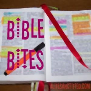 Bible Bites
