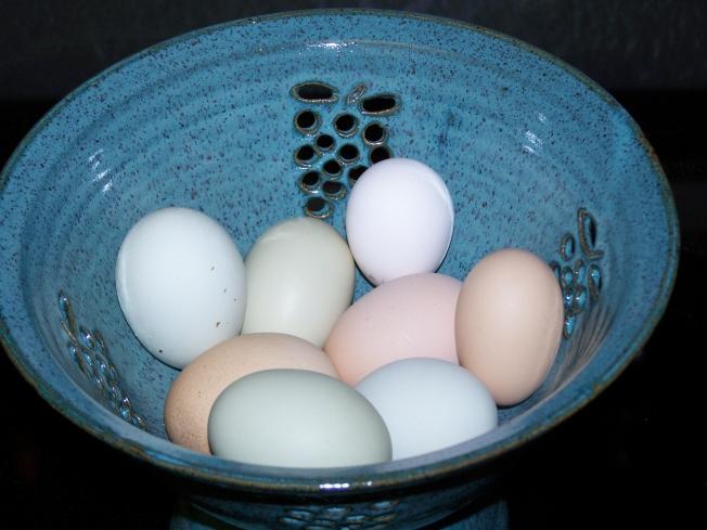 eggs-psalm-132-15-2